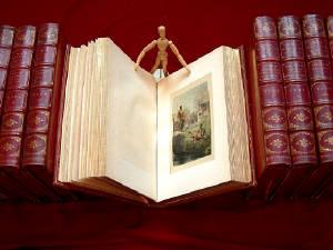 Michael Laird Rare Books LLC