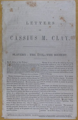 Cassiusclay