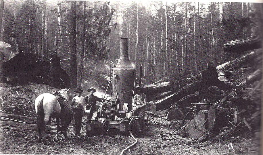 Redwoodfor
